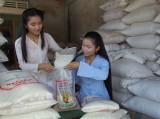 Để hương gạo Nàng Thơm Chợ Đào bay xa