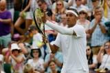 Raonic và Dimitrov bị loại ở vòng 3 Giải Wimbledon