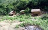 Truy tìm hung thủ thảm sát giữa rừng, giết 4 người cùng gia đình