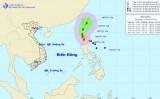 Bão LINFA gây gió giật cấp 8 ở Đông Bắc Biển Đông