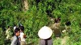 Khởi tố vụ án giết chết 4 người trong một gia đình ở Nghệ An