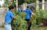 Tân Hưng: Ra quân diệt lăng quăng phòng, chống sốt xuất huyết