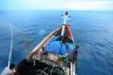 Công bố Chiến lược quản lý tổng hợp đới bờ Việt Nam đến năm 2020