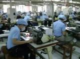 Lương sếp của tập đoàn dệt may hơn 640 triệu đồng/năm