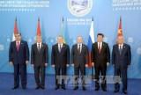 Khai mạc Hội nghị Thượng đỉnh SCO