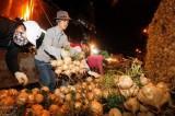 Hà Nội: Chợ đầu mối Long Biên sẽ trở thành chợ dân sinh