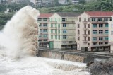 Bão Chan-hom đổ bộ Trung Quốc, cột sóng cao 10 mét