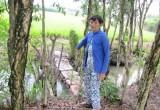 Ngang nhiên đắp bờ ngăn nước, gây thiệt hại lúa hàng xóm