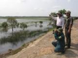 Long An: Khu Bảo tồn đất ngập nước Láng Sen có 148 loài chim quý hiếm đang sinh sống