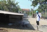 Long An: Châu Thành làm tốt công tác vệ sinh, tiêu độc, khử trùng trong chăn nuôi