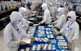 Hiệp định thương mại EVFTA: Việt Nam và EU được lợi gì?