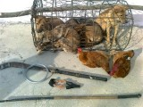 Một dân phòng bị bọn trộm chó bắn ngất xỉu
