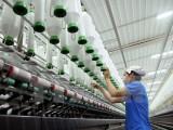 Doanh nghiệp Việt đổi mới công nghệ: Muộn còn hơn không