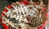 Hương vị cá nướng giữa mênh mông hồ Ba Bể