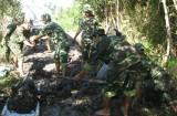 Xây dựng Đảng bộ Quân sự trong sạch, vững mạnh