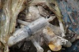 Biên Hòa: Phát hiện số lượng lớn chất thải y tế đổ xuống suối