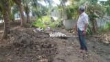 Gần 5ha đất lúa bỏ hoang ở Tân Trụ: Tòa án đang thụ lý giải quyết
