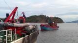 Cứu hộ thành công tàu cá cùng 15 ngư dân bị nạn trên biển
