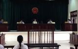Hoãn phiên tòa xử vụ mua bán trẻ ở chùa Bồ Đề, Hà Nội