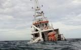 Đã vớt được 3/7 thi thể nạn nhân mất tích vụ chìm tàu tại Bình Thuận