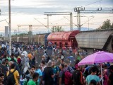 Gần 3.000 người di cư được cứu trên Địa Trung Hải trong ngày 2/9