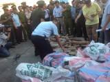 Khởi tố vụ buôn lậu hơn 2 tấn ngà voi qua cảng Đà Nẵng