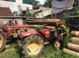 Cách chức trạm trưởng trạm kiểm lâm do rừng bị tàn phá