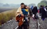 Đức kêu gọi EU nhanh chóng giải quyết cuộc khủng hoảng người tị nạn