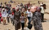 Tổ chức từ thiện kêu gọi Tây Ban Nha mở cửa biên giới cho người tị nạn