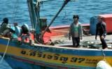 Cảnh cáo, áp giải 3 tàu cá Thái Lan ra khỏi vùng biển Việt Nam