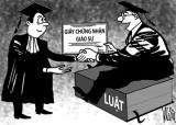 Có nên giao quyền tự chủ bổ nhiệm giáo sư?