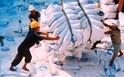 Xuất khẩu gạo tiếp tục khó khăn, thị trường ảm đạm