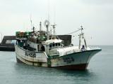 3 thuyền viên Việt Nam mất tích ngoài khơi Nhật Bản