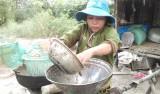 Lũ thấp - người nuôi thủy sản gặp khó