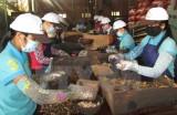 Giá trị xuất khẩu nông lâm sản tháng Mười ước đạt 2,55 tỷ USD