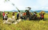 Vinh danh 100 doanh nghiệp vì nhà nông