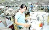 Vào TPP, nhóm hàng Việt nào lập tức hưởng thuế suất 0%?