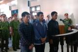 Hoãn xử sập giàn giáo Formosa Hà Tĩnh vì bị cáo vắng mặt