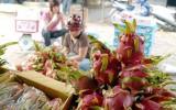 Xuất khẩu nông sản đem về 27,4 tỷ USD trong 11 tháng