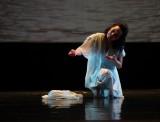 Kịch múa Việt – Hàn: 800 năm hẹn ước