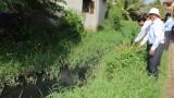 Khảo sát việc thực hiện chương trình mục tiêu Quốc gia về vệ sinh môi trường nông thôn