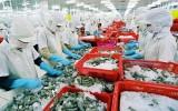 AmCham nâng dự báo kim ngạch thương mại Việt–Mỹ lên 80 tỷ USD vào 2020