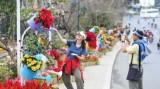 29-12: khai mạc Festival hoa Đà Lạt