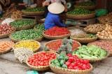 Lonely Planet chia sẻ món ăn ba miền của Việt Nam