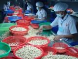 Thương mại Canada-Việt Nam trong chín tháng đạt hơn 2,8 tỷ USD