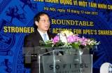 Việt Nam chuẩn bị toàn diện và đầy đủ cho Năm APEC 2017