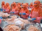 Kim ngạch xuất khẩu ngành thủy sản cả năm giảm hơn 14%
