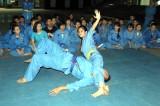 Sinh viên yêu võ Việt