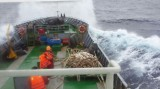Tàu Hải quân cứu nạn một tàu cá chở 10 thuyền viên bị nạn