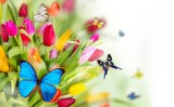 Một thoáng mùa xuân